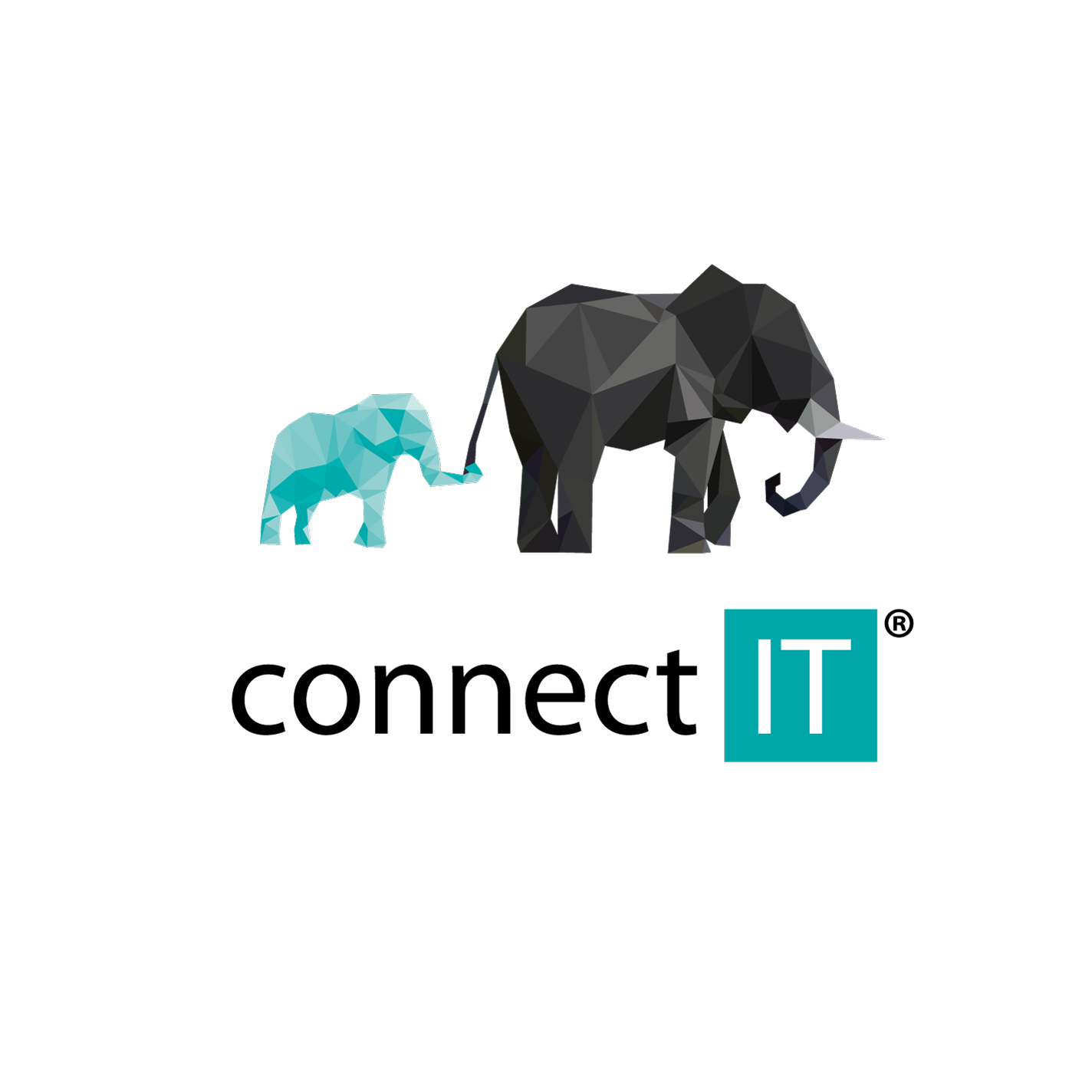connect-it-elephants.jpg